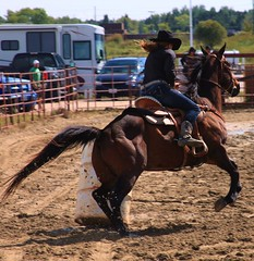 rodeo8 (photoluver1) Tags: horse woman animal sport outdoor jeans cowgirl