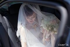 ,,,, (Vincent ) Tags: wedding corner vincent                          iwedding    corneri                     corneriwedding corneriweddingstudio vincent   httpwwwfacebookcomvinlintws  httpwwwfacebookcomcorneriwedding  httpcorneriweddingblogspottw