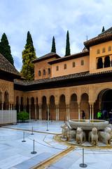 The Alhambra, Granada - Palacios Nazares - Palacio de los Leones - Patio de los Leones (Court of the Lions), looking south-east (peripathetic) Tags: building beauty architecture canon buildings spain worldheritagesite espana alhambra moorish granada 5d palaces 2016 nasrid nazaries 5dmkiii 5dmk3 canoneos5dmk3