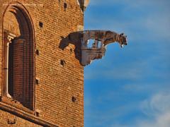Siena, Italia (guspatagonico) Tags: red sky italy wall architecture italia bricks gargoyle tuscany siena toscana gargouille wasserspeier doccione