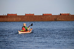 IMG_3657 (haileeparker) Tags: portcredit missisauga toronto canada kayak sailboat outdoors cntower skyline photo ontario lakeontario