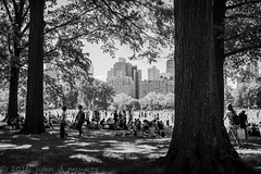 summer sunday at the sheep meadow... (John Moyers) Tags: nyc newyorkcity summer centralpark sheepmeadow photobyjohndmoyers