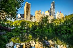 Morning has broken... (Alan Dreamworks) Tags: leica newyork reflection green centralpark manhattan f14 streetphotography getty summilux 21mm leicam