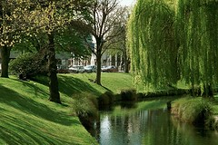 Christchurch, New Zealand (GothPhil) Tags: river avon trees willowtrees willows park lawn christchurch canterbury southisland newzealand september 1997