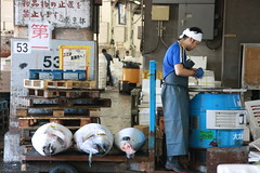 IMG_5890 (tsaaby) Tags: japan fishmarket fisk fiskemarked tmfstudietur