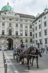Vienna (Geekstalt) Tags: vienna hofburg palace royal french imperial architecture building history horse horses carriage