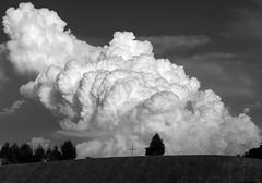 The Cross Beneath the Cloud (WMJ614) Tags: cloud tree church landscape lumix cross religion jesus christian panasonic cumulus fz1000