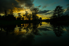 Delight at the light (Costigano) Tags: trees ireland light sunset sky irish sun sunlight reflection nature clouds canon eos scenery outdoor scenic kildare cartonhouse