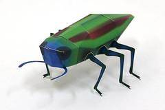 Buprestidae Beetle Free Papercraft Download (PapercraftSquare) Tags: beetle buprestidae