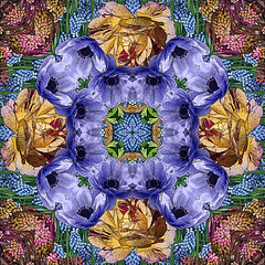 Kaleidoscopic Floral I (Ursa Davis) Tags: flowers blue red roses plant abstract flower holland color art geometric netherlands floral dutch rose yellow oregon digital photoshop portland photography photo flora purple bell manipulation kaleidoscope anemone nouveau davis bluebell ursa kaleidoscopic keukenhof coloful