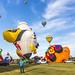International de montgolfières de Saint-Jean-sur-Richelieu 40