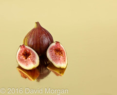 Fig on gold (Sgt Morgan) Tags: fruit fruits getty cut exotic fig figs food green one organic purple ripe ripening separated single slice sliced sweet tropical violet