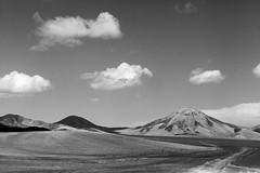 Pampa en Regin de Antofagasta, Chile 2016 (Borlone-Leuqun) Tags: antofagasta pampa calama chile paisaje bw bn blancoynegro