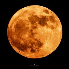 Full Moon (David.Herrera) Tags: david herrera luna llena moon full october octubre de big red yellow eclipse mexico guadalajara tequila nikon coolpix p 900 p900 zoom 2000zoom davidherreramx df cool gigante yeah chido hermosa hermoso