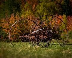 Antique Hay Rake (coleenr2005) Tags: hayrake rake fallfoliage fallcolor hay antiquefarmequipment rest