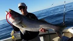 #ottertails #montauk #fireisland #longisland #greatsouthbay #surfcasting #onthewatermagazine #stripers #bass #bassfishing #lure #bait #branding #entrepreneur #instagood #picoftheday #riversendtackle #kitterytradingpost #seabass #fishing #freshwater #fishi (Otter Tails) Tags: ottertails montauk fireisland longisland greatsouthbay surfcasting onthewatermagazine stripers bass bassfishing lure bait branding entrepreneur instagood picoftheday riversendtackle kitterytradingpost seabass fishing freshwater fishingtrip fishinglife original fishingislife fishingpicoftheday madeinamerica usa trailerbait trailerbaits ottertail  fisherman thegreatoutdoors kayakfishing largemouthbass lovefishing picassolures getoutdoors follow followme photooftheday stripedbass bluefish fish ocean guyharvey cuda ottertrailer ottertrailers ottertrailerbait ottertrailerbaits trailer trailers