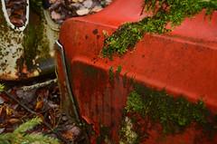 Bilkyrkogrden (saabrobz) Tags: ford nature back junk sweden sverige junkyard taking taunus bilkyrkogrden bilskrot