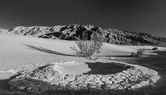 I'm still on earth... (Thomas Frejek) Tags: california usa deathvalley kalifornien deathvalleynationalpark 2013 taldestodes mesquiteflatsanddunes