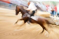 L'Ardia (giusmelix) Tags: sardegna horse motion canon eos movement sardinia traditions rush mk2 movimento panning 1ds cavallo ef corsa mkii markii scatto tradizioni 24105mm ardia sedilo