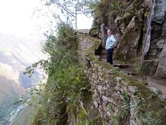 Machu Picchu-50