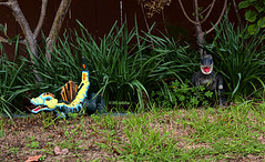 When Dinosaurs Roamed The Earth (Art By Pem Photography: Tao Of The Wandering Eye) Tags: california blue red usa color colour green colors yellow canon toys colours dinosaur lawn nopeople plastic rex stegosaurus bushes dinosaurs trex whimsical tyrannosaurus fineartphotography greass canoneosrebelsl1