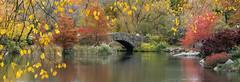 Fall colors around Gapstow Bridge, Central Park, Manhattan, New York, USA. (pedro lastra) Tags: new york city usa high nikon manhattan d750 resolution hi res susanne kremer