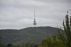 DSC_0450 Telstra Tower, Black Mountain, Canberra (johnjennings995) Tags: australia canberra act telstratower