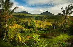 IMG_1044_Pengelengan Mountain (gedelila) Tags: bali advertising rice stockphoto jatiluwih tabanan sorga topphotographer subak pulaudewata gedelila indahelok pulauterindah topbudaya lpadi