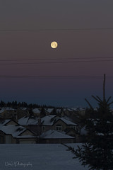 Moonset I (Una S) Tags: city morning winter sky moon snow canada calgary dusk ab roofs crater setting neighbourhood