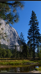 El Capitan -Yosemite National Park (Contrails) Tags: california trees usa mountains nature sunshine landscape nationalpark nps bluesky sierra yosemite wilderness elcapitan sierranevada yosemitevalley elcap rockformation granitemonolith rangeoflight