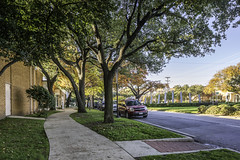 Hiline Drive Outside of Decorative Center (Mabry Campbell) Tags: november autumn trees usa fall photography photo dallas texas photographer realestate unitedstates image tx nopeople photograph commercial 100 24mm client f71 fineartphotography 2014 architecturalphotography dallascounty cityofdallas colorimage commercialphotography commercialrealestate commercialproperty designdistrict architecturephotography 3500mapleavenue dallasdesigndistrict houstonphotographer 3500maple ¹⁄₅₀sec tse24mmf35lii loweroaklawn cassidyturley mabrycampbell bridgerconway november262014 20141126h6a0483