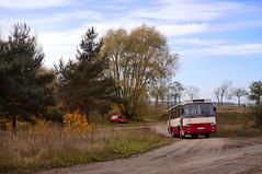 Off-road Autosanem (J. Piecuch) Tags: city autumn bus fall public transport impreza autobus h9 jesień miejska leszno mzk komunikacja autosan specjalny wynajem h935 psiukacz