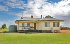 147 Reserve West Road, Dareton NSW