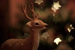 Reno (Monica Fiuza) Tags: christmas stars reindeer navidad bokeh estrellas christmasornament reno christmasprop adornonavideno