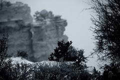 Grand Canyon under the snow (Alex Szymanek) Tags: morning bw snow black nature monochrome canon landscape snowflakes early december open bokeh grandcanyon az noflash blizzard 70200 markii