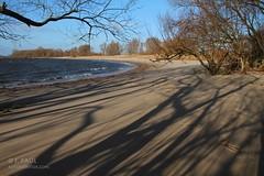 Strand Hetlinger Schanze (Elbmaedchen) Tags: strand schatten elbe schleswigholstein hetlingerschanze unterelbe