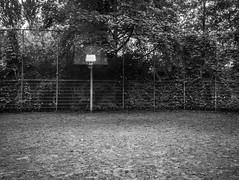 all yours (mahohn) Tags: bw monochrome basketball hamburg 43 fujix10