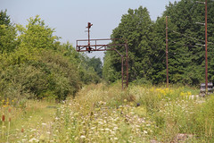 Summer View (craigsanders429) Tags: signals railroadsignals erielackawanna abandonedrailroads warrenohio erierailroad