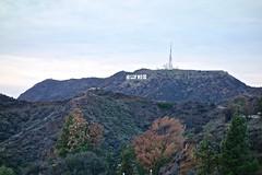 Hollywood, CA (EleanorGiul ~ http://thevelvetrocket.com/) Tags: california usa unitedstatesofamerica roadtrip eua hollywood northamerica eeuu  usaroadtrip thewest  statiunitidamerica  justinames traveltousa visitusa  httpthevelvetrocketcom eleonoragiuliani eleonoraames