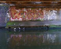 Robbo Tribute (cocabeenslinky) Tags: street city uk england urban streetart london art lumix photography graffiti artist photos united capital north january kingdom panasonic tribute graff artiste robbo 2015 dmcg6 ©cocabeenslinky