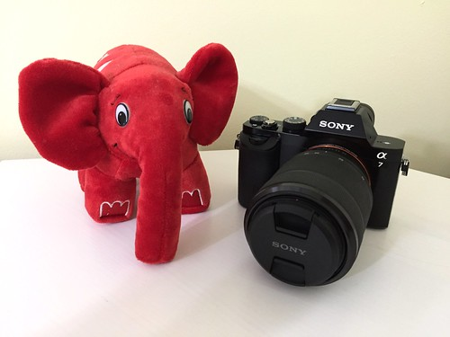 It's not as big as an Elephpant!