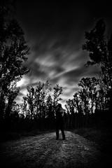 Moonlight night pose (Michele Mastrosimone) Tags: trees light boy man black clouds pose studio woods shadows autoportrait no cartoon manga ken bn study moonlight 1983 shape laying blackmetal kenshiro hokuto posa longexposition tetsuohara buronson