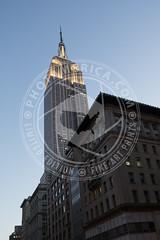 NEWYORK-297