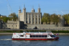 Millennium City (1) @ Upper Pool 04-05-16 (AJBC_1) Tags: uk england london boat ship unitedkingdom transport vessel landmark transportation pooloflondon riverthames toweroflondon millenniumcity londonskyline nikond3200 touristboat citycruises passengerboat ajc