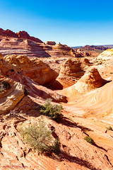 Around The Wave (mikerhicks) Tags: travel arizona usa southwest nature geotagged outdoors photography utah spring unitedstates desert hiking adventure event backpacking wilderness kanab thewave marblecanyon onemile coyotebuttesnorth vermilioncliffsnationalmonument geo:country=unitedstates camera:make=canon exif:make=canon geo:state=arizona exif:focallength=18mm exif:aperture=90 exif:lens=1835mm exif:isospeed=100 canoneos7dmkii camera:model=canoneos7dmarkii exif:model=canoneos7dmarkii sigma1835f18dchsma geo:lat=3699525667 geo:lon=11200560667 geo:lat=36995256666667 geo:lon=11200560666667 geo:location=onemile geo:city=marblecanyon
