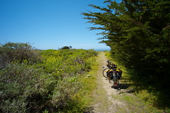 Coast Ride 2016 (Campy Only) Tags: california bicycling coast ride bigsur hwy1