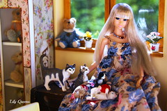 With a lot of friends ;-D ( Lily Queens ) Tags: doll you can custom choose sapphire sekiguchi momoko