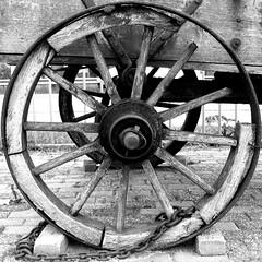 wagon wheel, 2005 (doc(q)man) Tags: iron wood wheel spokes old decay rust axis chain wagon geometrical circle round abstract pattern rhythm wroughtiron squaredcircle bw blackandwhite monochrome docman