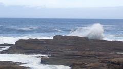 Breaking Waves (Rckr88) Tags: ocean africa travel sea nature water southafrica outdoors coast waves south wave coastal coastline gardenroute tsitsikamma breaking breakingwaves rockycoastline tsitsikammanationalpark