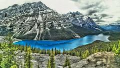 Peyto Lake, Banff National Park, Alberta Canada (Chrigi111) Tags: blue trees lake canada mountains vancouver nationalpark jasper bluewater peak glacier alberta banff hdr banffnationalpark peytolake peyto p8 huawei highdynamic